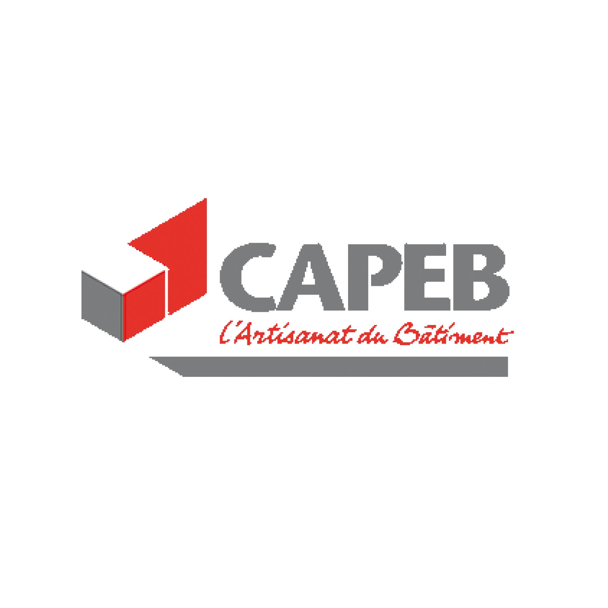capeb neoone logo
